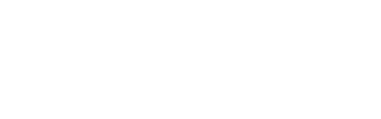 FE Investments Logo